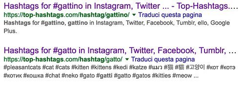 top hashtag gattini